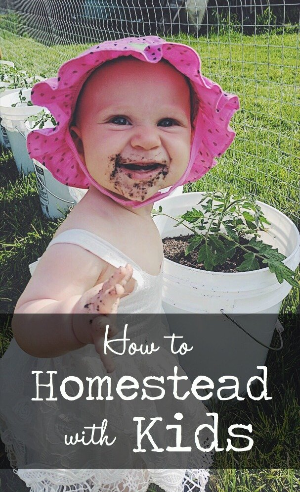 How to Homestead with Kids | The House & Homestead