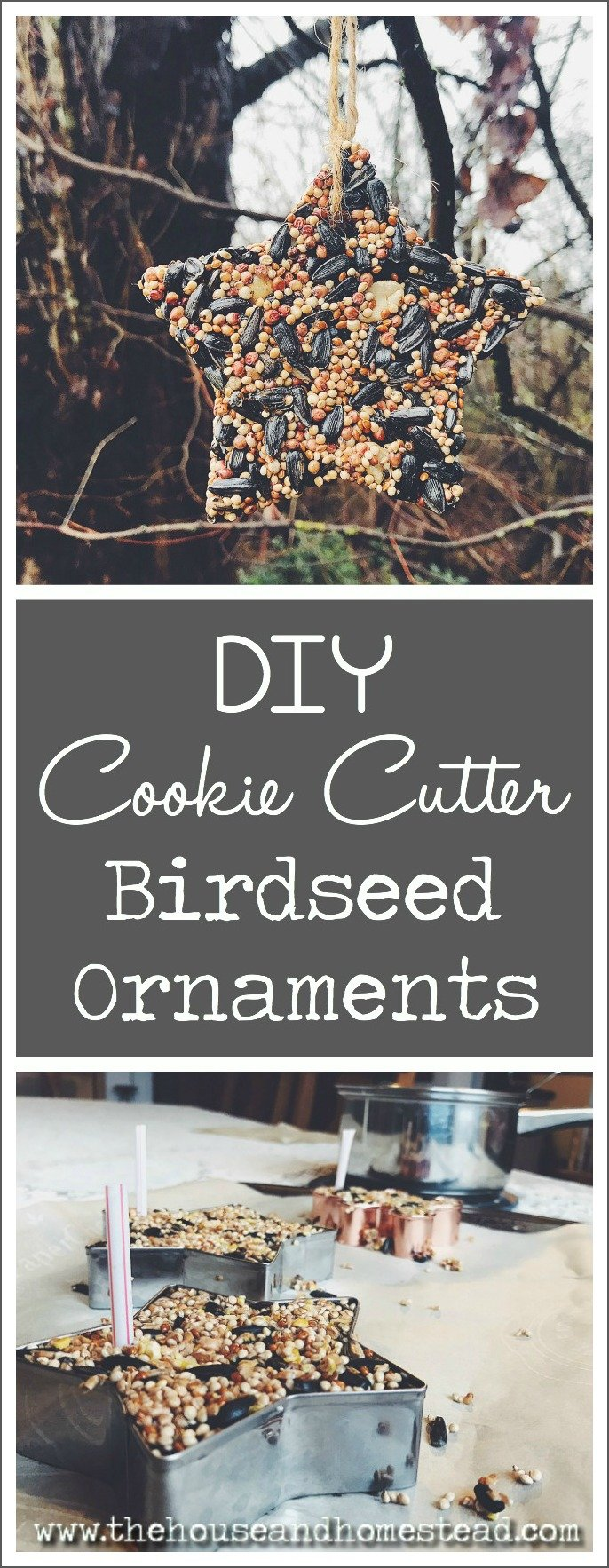 Diy cookie cutter birdseed ornaments the house homestead these quick and easy diy birdseed ornaments make a perfect handmade christmas gift for friends solutioingenieria Gallery