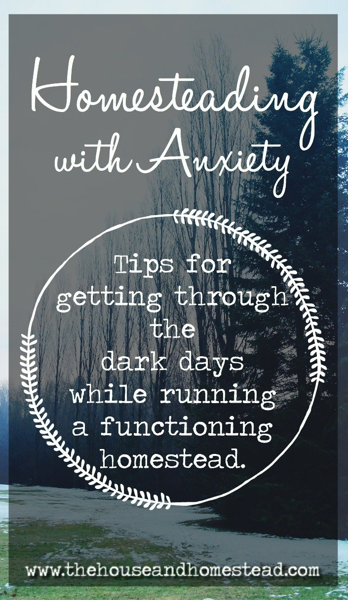 Homesteading With Anxiety: Tips For Getting Through the Dark Days